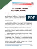 Psicologia General - Desarrollo Humano 2da Parte