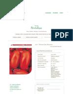 Tomates Como Plantar