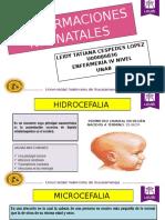 Malformaciones neonatales 1