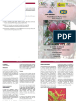 ciruelos.pdf