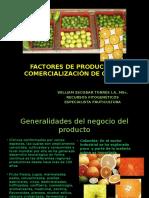 biblioteca_65_Factores de Producción y Comercialización Frutícola.pptx