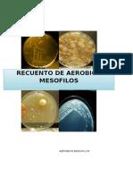 AEROBIOS MESOFILOS