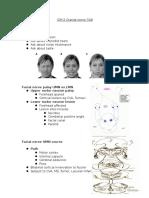 ICM 2 Cranial Nerve 7