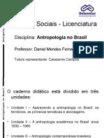 Antropologia No Brasil