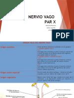 Nervio Vago Exposicion Final