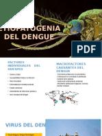 Etiopatogenia Del Dengue