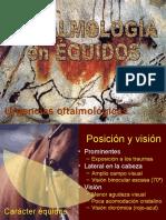 OftalmologiaEquina