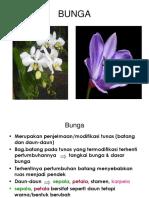 morf-bunga