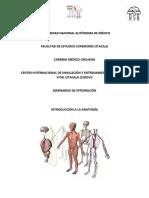 MANUAL ANATOMÍA (1).pdf
