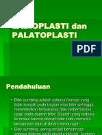 Labioplasty and Palatoplasty