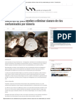 Bacterias de Yuca Ayudan a Eliminar Cianuro de Ríos Contaminados Por Minería - Colombia-Inn