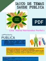 Apresentação1 SAUDE PUBLICA LINA PERFEITO