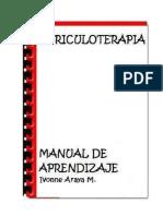 Auriculoterapia Curso Express