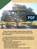 Projeto Biblioteca Virtual Rudolf Steiner