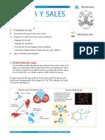 apuntes-bioquc3admica-extendidos