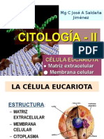 Citologia 2 Parte 1