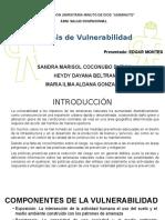 Vulneravilidad.pptx