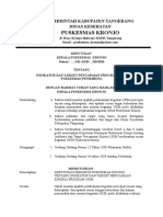 Sk Indikator Pencapaian Target Ukm Ok