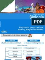 Clase 22 Fotosíntesis  Incorporación de materia y energía al ecosistema 2016.ppt