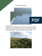 LUGARES deforestados