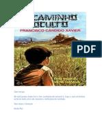 Chico Xavier - Livro 025 - Ano 1947 - O Caminho Oculto.pdf