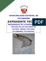 EXPE. TEC. TRUCHAS - VILCA.doc