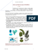 13_14_Pteridofitos_texto.pdf