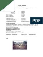 proyectos_infraestructura