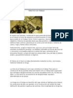 Antecedentes Historia de Los Tributos en Bolivia