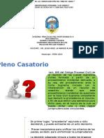PLENO CASATORIO.pptx