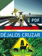 DEJALOS CRUZAR.pptx