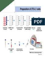 Cells Experiment 3T3 L1 26Aug2016 Pptx