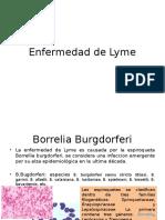 Enfermedad de Lyme UABC