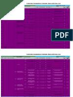 PLAN 10437 Estructura Programatica y Funcional 2013 2013