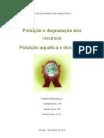 Poluição e degradação dos recursos