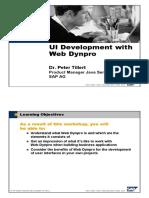 UI Development With Webdynpro