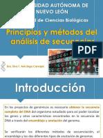 Principios y Metodos Del Analisis de Secuencias