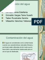 contaminacin-del-agua-1234746095685605-3