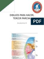 DIBUJOS PARA HACER,.pdf