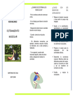 Folleto_estiramientos.pdf