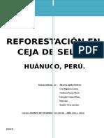 Plan de Reforestación en Ceja de Selva