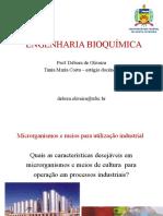 Engenharia Bioquímica_Aula 02_Microrganismos e Meios