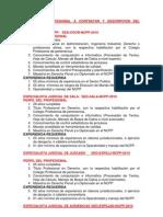 PERFIL DEL PROFESIONAL A CONTRATAR Y DESCRIPCIÓN DEL PUESTO