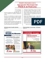 PSOE Pedroche - Boletín nº 4