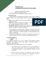 Lab 3 Elaboracion de Jugo Ynectar