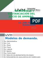 1.- La Demanda de Amparo y Modelos de Demanda.(2) (1)