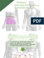 Gineco s. Endocrino y Ovulacion