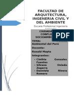Politica Ambiental Del Peru-EPIA-UCSM