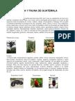 86965251 Flora y Fauna de Toda Centro America