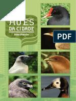 Aves da Cidade - São Paulo